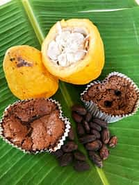 Cocoa pod, beans and cakes on banana leaves.