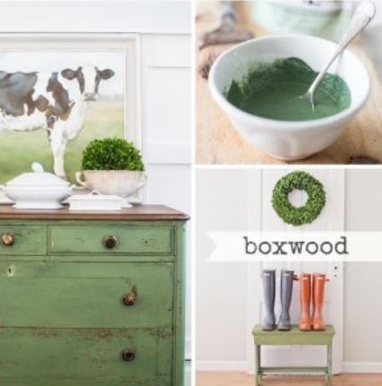Miss Mustard Seed´s Milk Paint im Farbton Boxwood, einem satten Buchsbaumgrün.