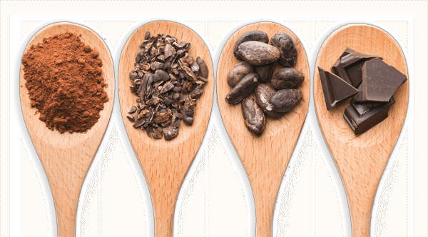 4 spoons: Cocoa Powder, Nibs, Beans and Chocolate