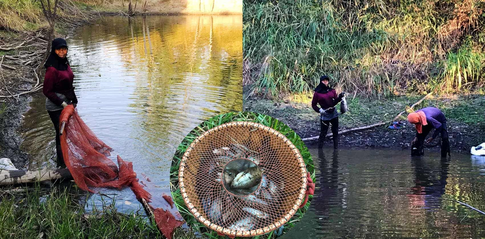 A Thai man and lady fishing in a farm lake in Isaan, Thailand. Also, a bucket with the fish they had caught.